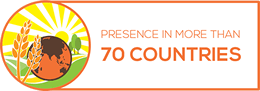 Presence in more than 70 countries